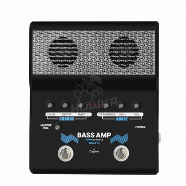 Scuru S5 Mini Bass Amp