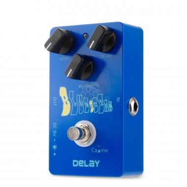 "Delay ""Blue Ocean"" Caline CP-19"
